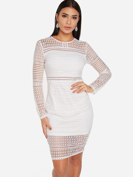 White See Through Lace Details Zip Back Design Crew Neck Long Sleeves Dress